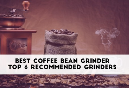 coffee-bean-feature